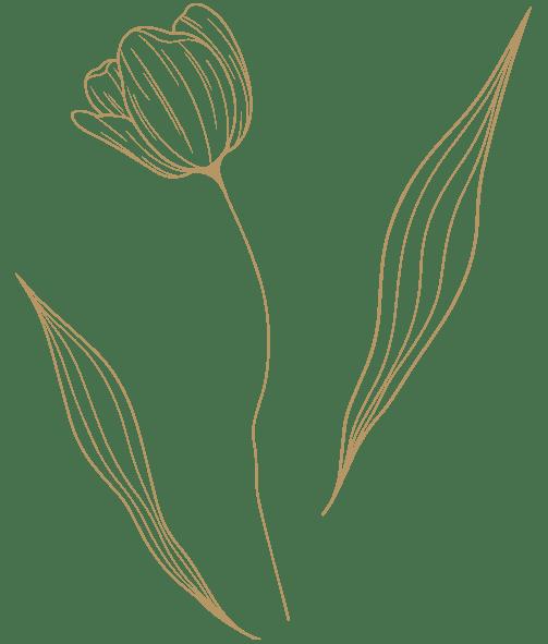 Hotel Mauri Marebello gruppi fiore